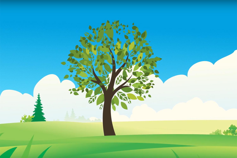 Cera is als een boom